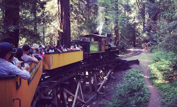 Paques sequoias