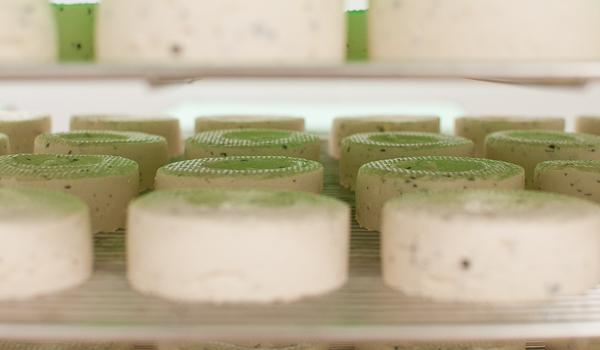 Un fromage frais produit par Kite Hill (Mahaut Launay - French Morning)