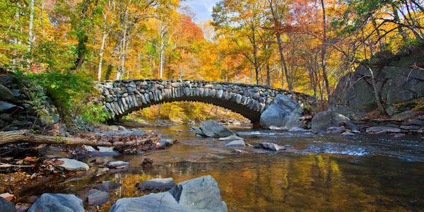 Rock creek 600350